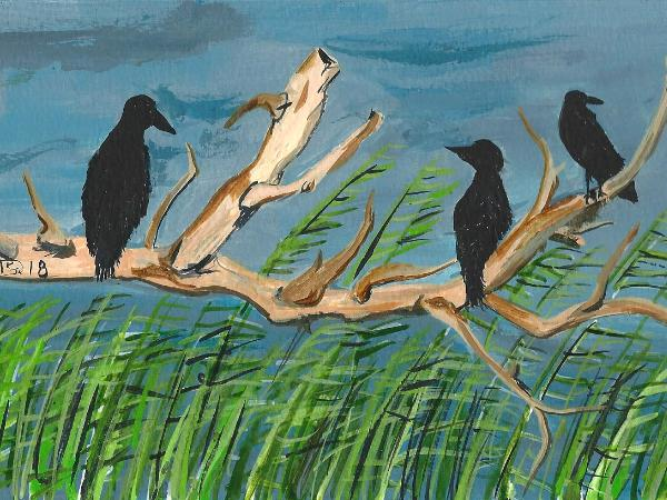The Patience of Crows