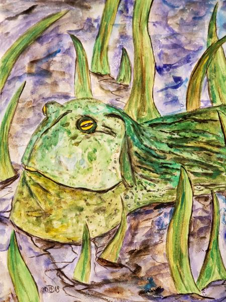 Ziggy, an African Bullfrog, dreams of going to Oxford...