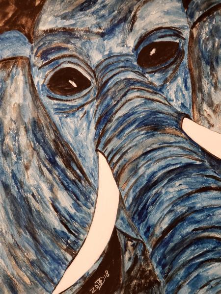 In my world all elephants speak Portuguese and debate theoretical physics.